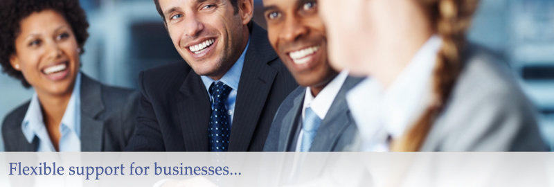 Northern Business Associates Business Support